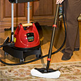 Ladybug Tekno 2350 TANCS Commercial Grade Vapor Steam Cleaners