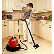 Ladybug XL2300 TANCS Steam Cleaners