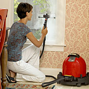 Ladybug XL2300 Steam Cleaners
