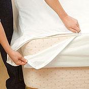 BeneSleep Bed Bug Covers