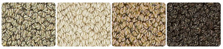 Dolomite Area Rug colors