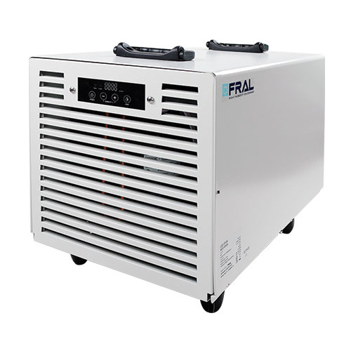 Dehumidifiers on Sale