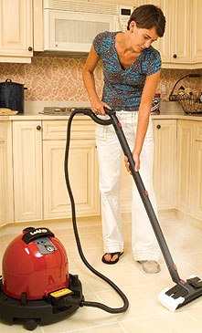 Vapor Steam Cleaners kill bed bugs with high temperature steam. The Ladybug Steamer pictured here is one of our top rated.