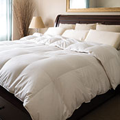 Monarch Hypodown Down Comforters - 800 Fill