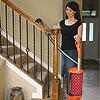Sebo Felix 1 Premium Upright Vacuum Cleaners