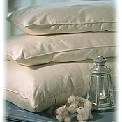 Organic Cotton Vegan Pillows