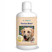 Vitabase Canine Boost Liquid Nutritional Supplement