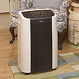 Home Comforts 70-Pint Low Temperature Dehumidifiers