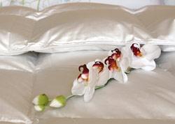 Venus White Siberian Goose Down Comforter