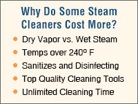 Home Steam Cleaners