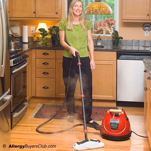 LadyBug Tekno 2350 Tancs Steam Cleaner - Demo Clearance Model