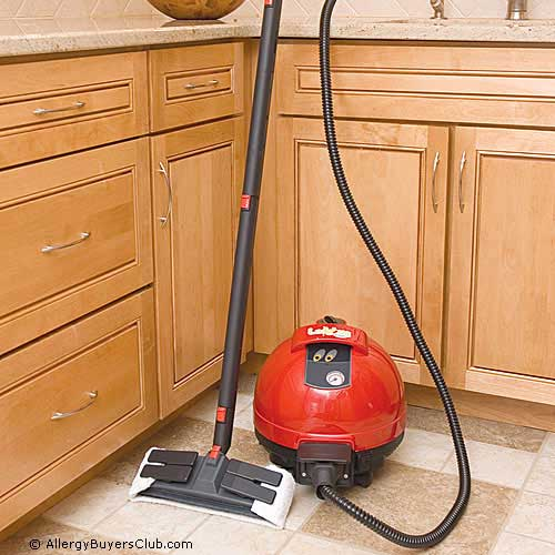 Ladybug 2200S TANCS Vapor Steam Cleaners - Supreme Package