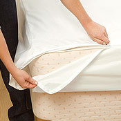 BeneSleep Allergy Blocking Mattress and Pillow Dust Mite Covers