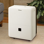 Portable or Small Dehumidifiers
