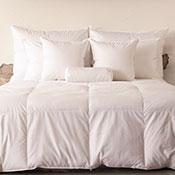 Ogallala Aspen Warm Hypodown Comforter - 900 Fill
