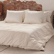 Ogallala Wildwood Organic Lightweight Hypodown Comforter 800-Fill