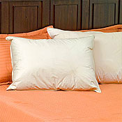 Hypodown 800 Fill Quality Down Pillows - King