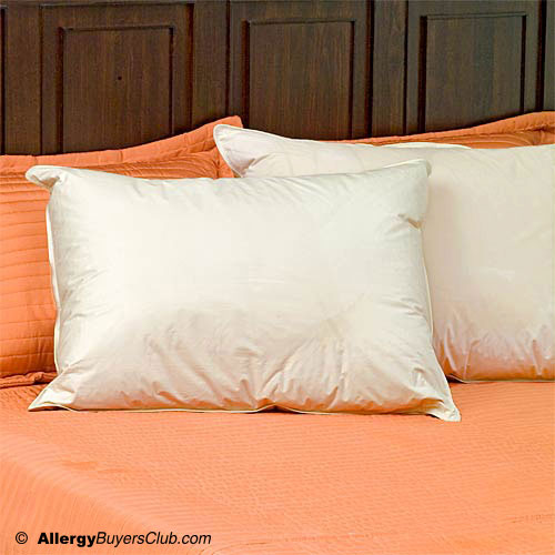 Hypodown 800 Fill Quality Down Pillows - Standard