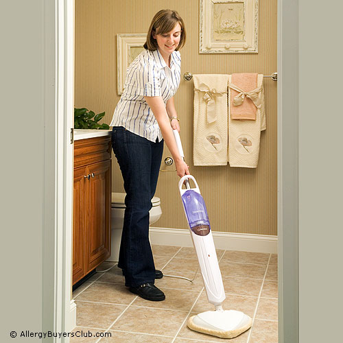 Reliable Steamboy T1 Steam Mops