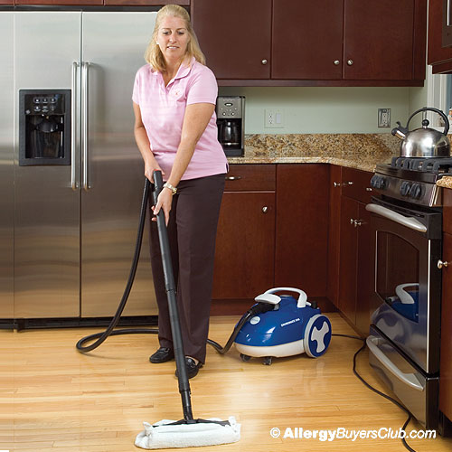 Reliable EnviroMate VIVA E40 Vapor Steam Cleaners