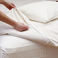Pristine Cotton Plus Comforter Encasings