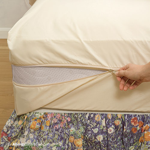 Solus Organic Cotton Mattress Cover