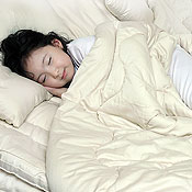 Sleep & Beyond Certified Organic Wool Comforter