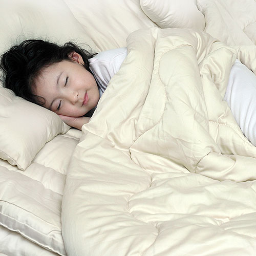 Sleep and Beyond Certified Wool Comforter
