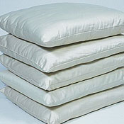 Sleep & Beyond Certified Organic Wool Pillow